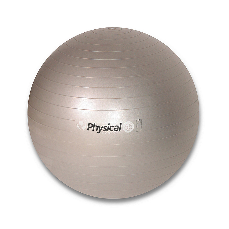 65cm Pro Stability Ball